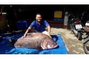 Cá hô khủng 107kg về 02/2016 LH: 0972660808
