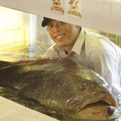Hàng Dương Quán nhận giao mồi nhậu tận nhà